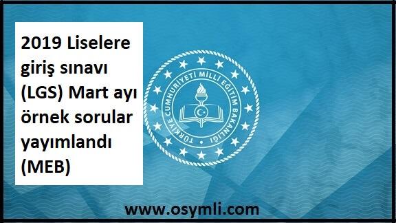 2019-lgs-mart-ayi-ornek-sorular-indir-pdf-doc