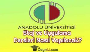 anadolu_universitesi_staj_uygulama_dersleri_nasil_yapilacak